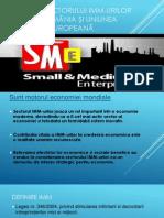 Analiza sectorului IMM-urilor din România şi Uniunea Europeană