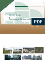 Biogas y Tipos de Plantas