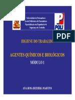 Higiene do Trabalho _(Microsoft PowerPoint - Higiene do Trabalho _AGENTES QU.pdf