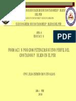 Auditoría - Competencias del nuevo CPA.pdf