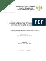 Estado y Riesgo Nutricional de Adultos Mayores, La Union. Septiembre 2010