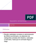 Transitointestinal Clase 1