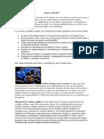 Documento tarea de seminario.docx