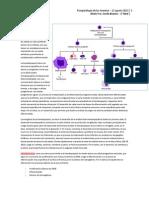 02. Fisiopatologia de Las Anemias