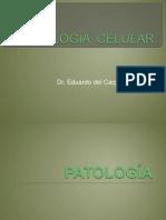 01-PATOLOGÍA  CELULAR