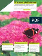 028-047 SE Ciencias Naturales 3 Plantas y Animales