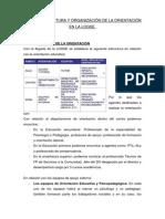 TEMA 2 DE ORIENTACIÓN.
