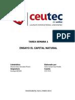 Ensayo el Capital Natural.docx