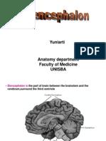 Diencephalon(Yuni)