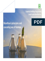 1 Principles of Biorefinery