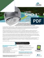 DTS09021 SHO1 DATASHEET ru 001 w.pdf