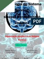 3 Fisiologia Do Sistema Nervoso Novo