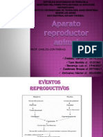 Fisiologia Animal( Aparato Reproductor Animal)