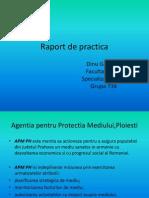 Raport de Practica