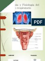 Anatomía y Fisiologia del aparato respiratorio.pptx