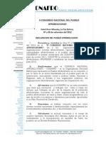 Declaracion Internacional Conafro PDF