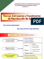 c 13 Tecnicas, Instrumentos y Procedimientos de Recoleccion de Datos Homero Ango a (1)