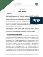 Auditoría Ambiental 1(3)