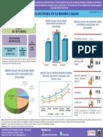 Infografía Nº 5 - 2013
