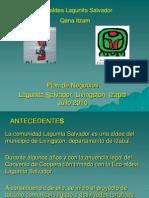 Presentacion Plan de Negocios, Lagunitas Julio 2010, Anexo 7