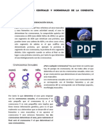 TEMA 4 Reproduccion. transcripcion completa.pdf