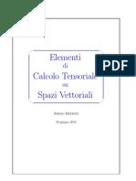 Calcolo Tensoriale Spazi Vettoriali
