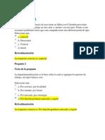 Prueba Diagnostica 1 Teoria de Las Organizaciones Politecnico Grancolombiano Resuelto