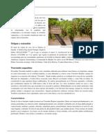 Torrontés.pdf-3