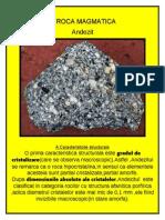 Geologie (roci magmatice si metamorfice caracteristici)