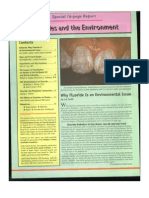 Fluoride and the Environment