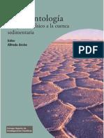 Sedimentologia. Del Proceso Fisico a La Cuenca