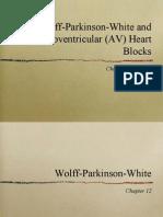 10-AV-blocks