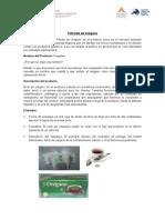 Desarrollo de Productos_filtrante de Oregano