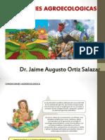 CONDICIONES AGROECOLOGICA.pptx