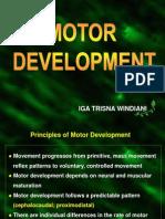 Lecture 12 Motor Development