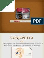 Conjuntivitis Viral2