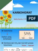 Karbohidrat Ahp 1