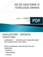 Analizatorii - Cutanat Olfactiv Vizual