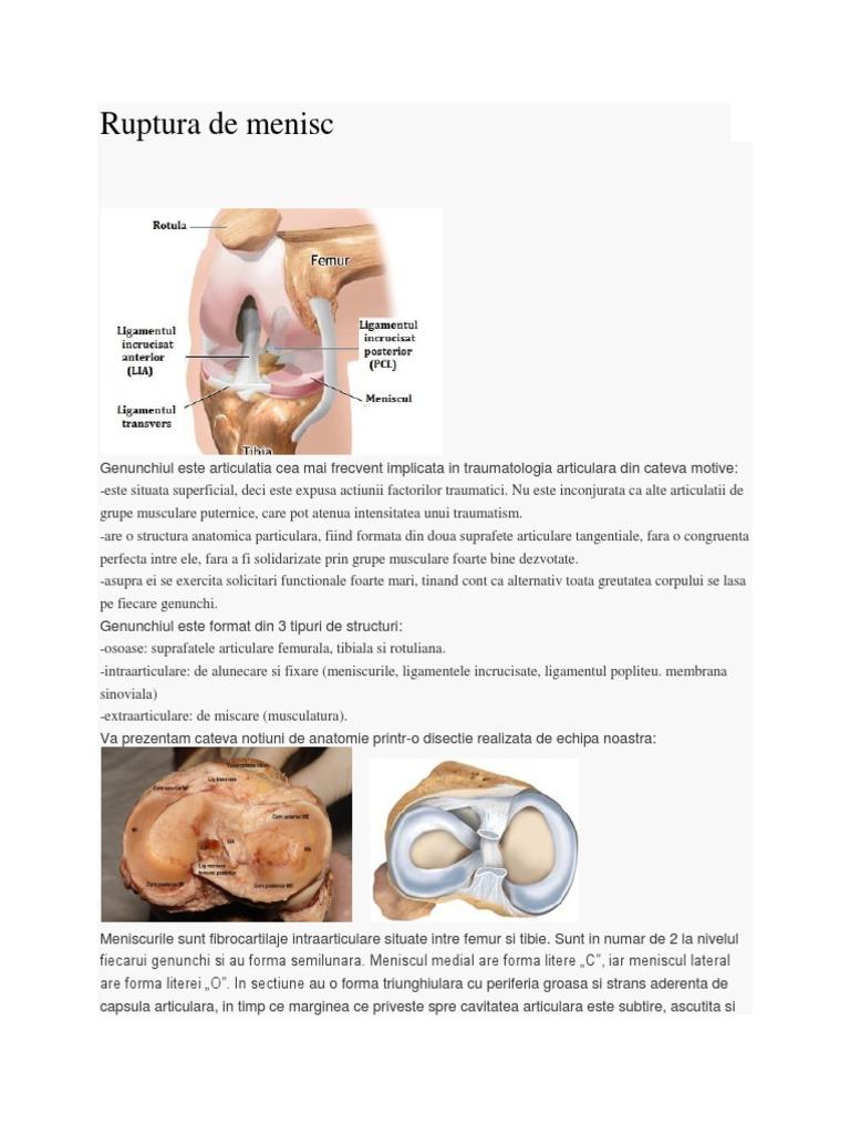 Protecție și nutriție articulară optimă cu Movial Plus