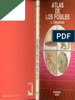 Atlas Jover de Los Fosiles