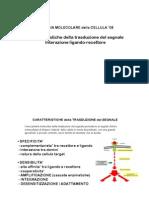 BMdC08-2.pdf