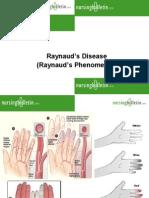 14559879 Raynauds Disease