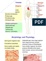 Enterobacteriaceae(M)