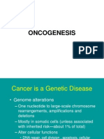 Bm 8-9 Oncogenesis