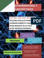 NEUROTRANMISORES Y NEUROPÉPTIDOS EXPO