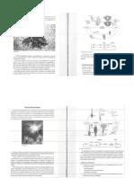 (166716655) Fucus PDF