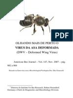 Virus Da Asa Deformada
