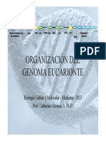 Genoma_BCM_2013