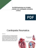 Presencia de ADN bacteriano en el tejido valvular de pacientes con cardiopatía reumática crónica