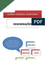 Degenerações 2013 (1)
